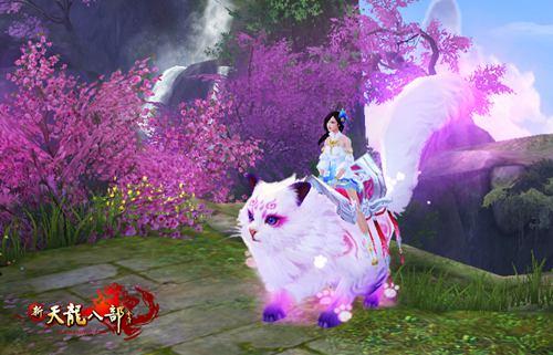 紫玉灵猫称之为最萌坐骑也不为过,可爱度爆棚